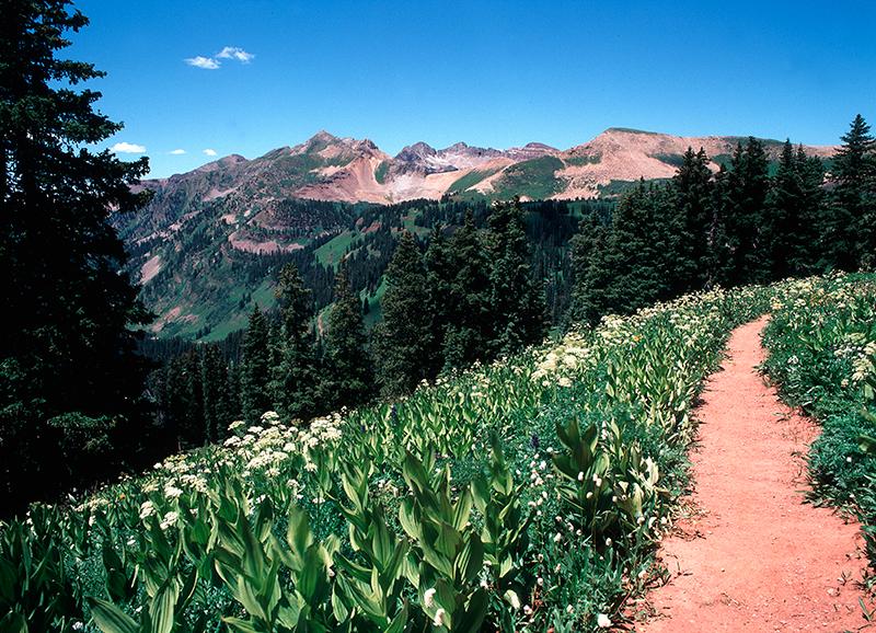 La Plata Mountains, Kennebeck Pass, Colorado