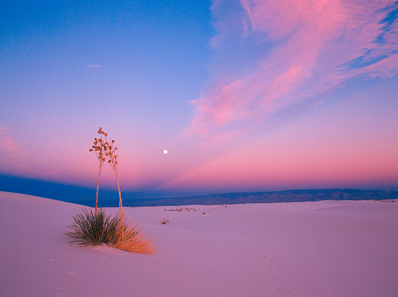 White Sands Moonrise 2