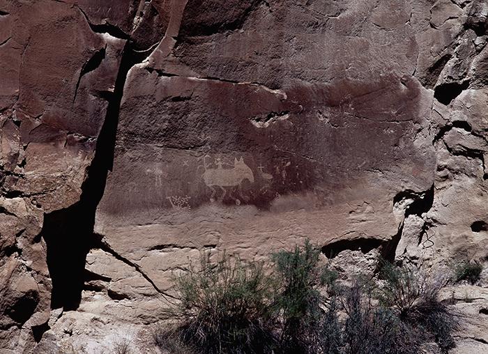 Salado Canyon 033