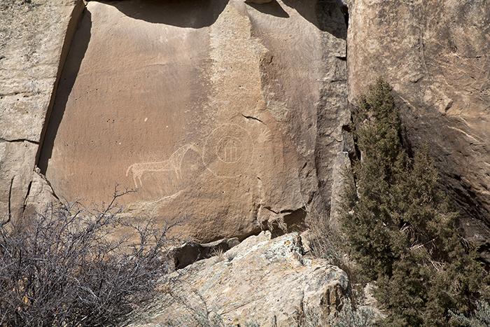 San Rafael Canyon 1264